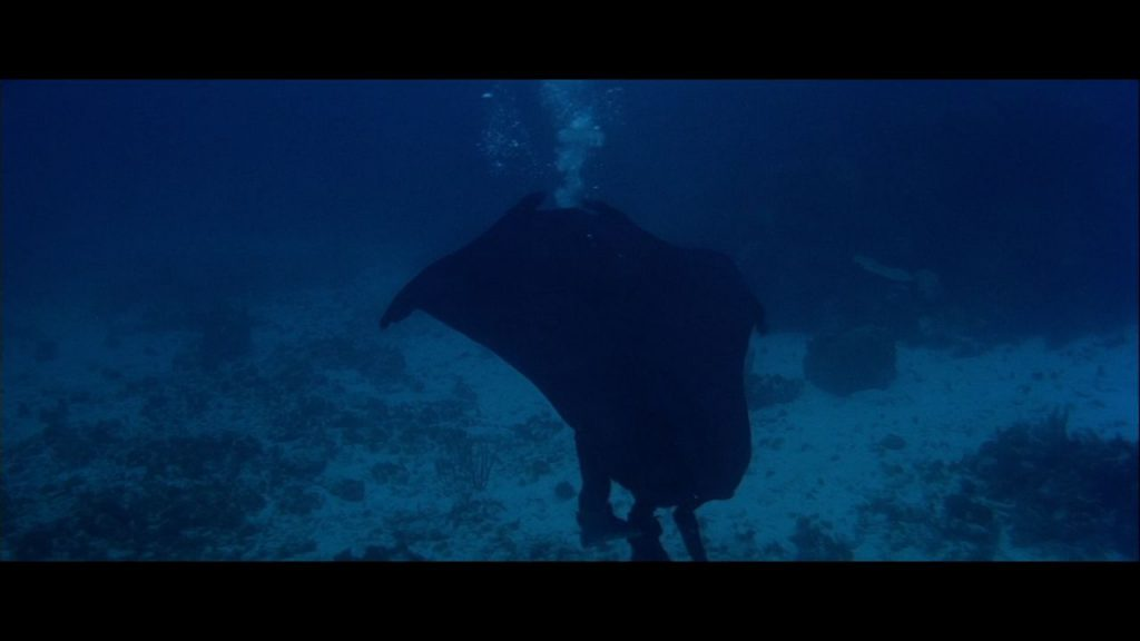 funniest disguises james bond manta ray licence to kill